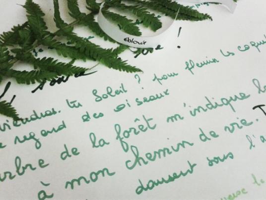 Feuille, écriture : art postal