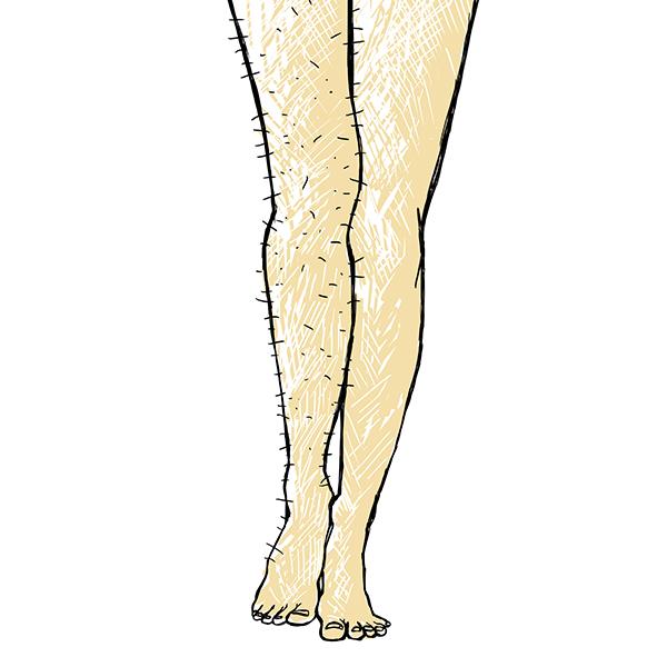 Jambes poilues : Poilitudes