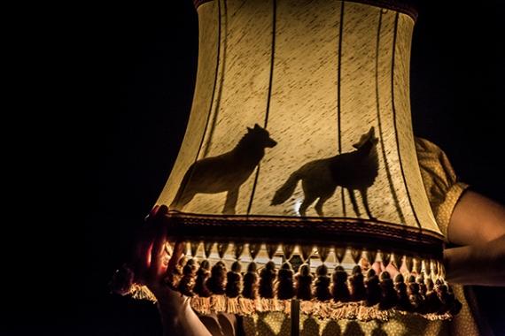 Spectacle Lisa Lira, jeu d'ombre sur abat-jour